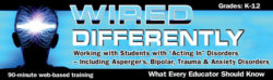 """Wired Differently: Working with Students with """"Acting-In"""" Disorders Webinar – Single User"""